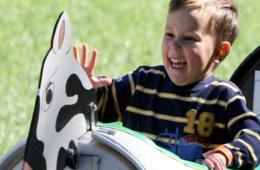 $99 for Great Country Farms BARNYARD BIRTHDAY PARTY - Up to 15 Kids! (57% Off!)