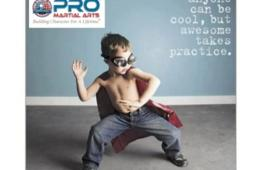 $39.99 for One Month of Karate Lessons from PRO Martial Arts - Chantilly ($179 value - 78% off)